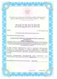 Лицензия 1 л.